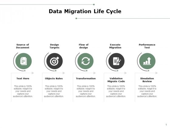 Data Migration Life Cycle Ppt PowerPoint Presentation Professional Structure