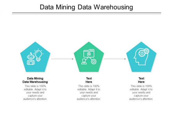Data Mining Data Warehousing Ppt PowerPoint Presentation Portfolio Show Cpb Pdf