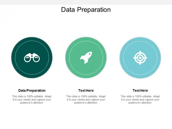 Data Preparation Ppt PowerPoint Presentation Icon Deck Cpb