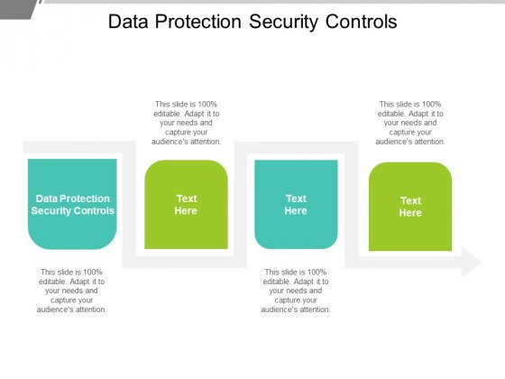 Data Protection Security Controls Ppt PowerPoint Presentation Layouts Shapes Cpb