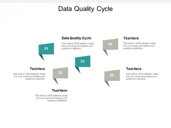 Data Quality Cycle Ppt PowerPoint Presentation Summary Outfit Cpb