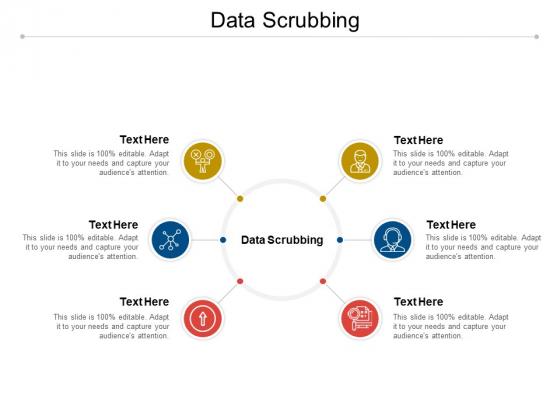 Data Scrubbing Ppt PowerPoint Presentation Model Gallery Cpb Pdf