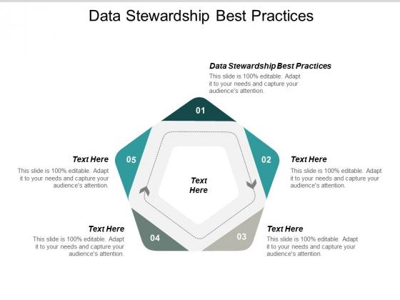 Data Stewardship Best Practices Ppt PowerPoint Presentation Slides File Formats Cpb