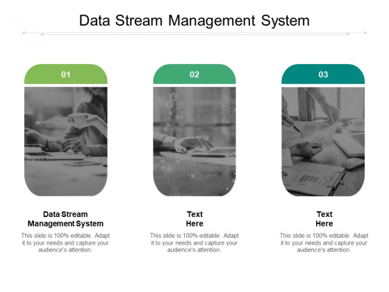 Data Stream Management System Ppt PowerPoint Presentation Pictures Templates Cpb Pdf