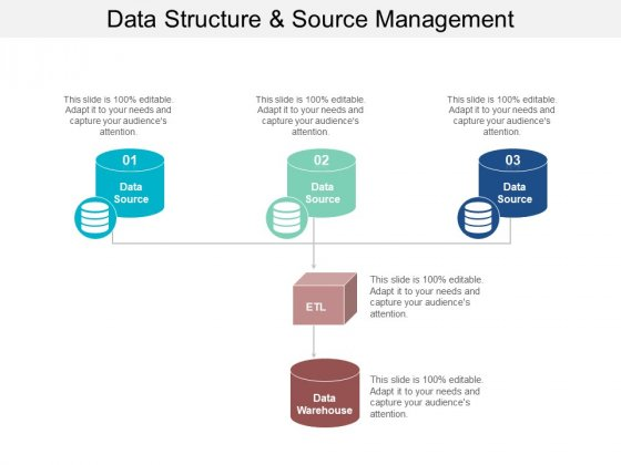 Data Structure And Source Management Ppt PowerPoint Presentation Layouts Show