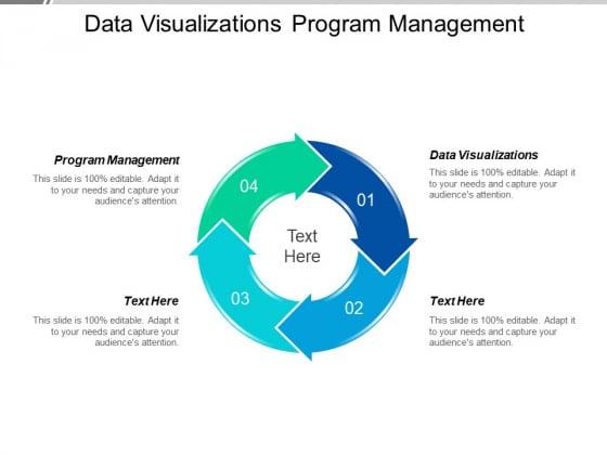 Data Visualizations Program Management Ppt PowerPoint Presentation Gallery Styles