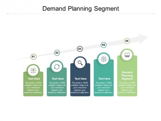 Demand Planning Segment Ppt PowerPoint Presentation Example Cpb