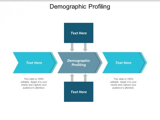 Demographic Profiling Ppt PowerPoint Presentation Layouts Good Cpb