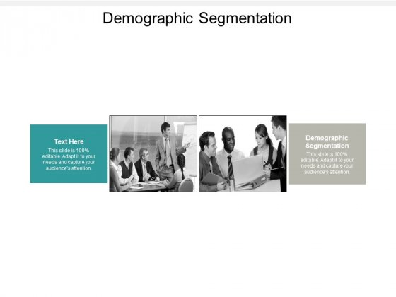 Demographic Segmentation Ppt PowerPoint Presentation Portfolio Format Cpb