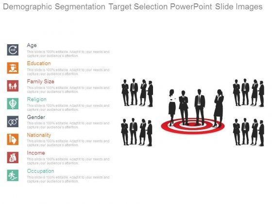Demographic Segmentation Target Selection Powerpoint Slide Images