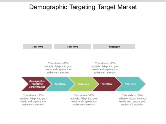 Demographic Targeting Target Market Ppt Powerpoint Presentation Pictures Design Templates Cpb