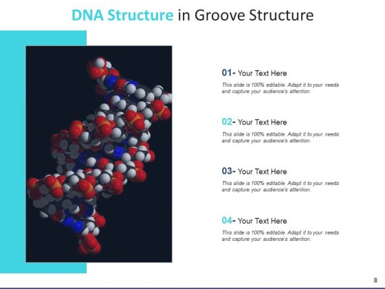 Deoxyribonucleic_Acid_Research_Operating_Ppt_PowerPoint_Presentation_Complete_Deck_Slide_8