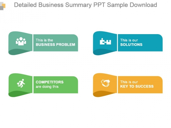Detailed Business Summary Ppt Sample Download