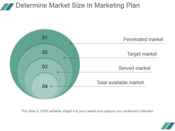 Determine Market Size In Marketing Plan Ppt PowerPoint Presentation Show