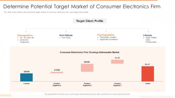 Determine Potential Target Market Of Consumer Electronics Firm Designs PDF