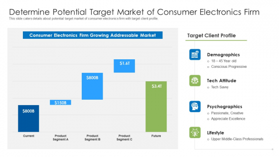 Determine Potential Target Market Of Consumer Electronics Firm Ppt Layouts Background Image PDF