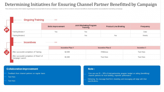 Determining Initiatives For Ensuring Channel Partner Benefitted By Campaign Ppt Gallery PDF