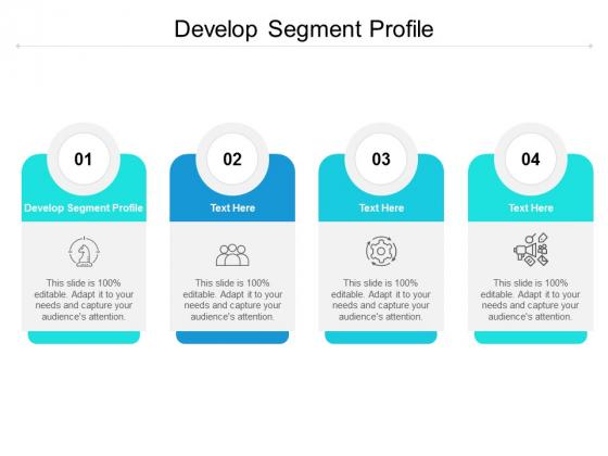 Develop Segment Profile Ppt PowerPoint Presentation File Graphic Tips Cpb