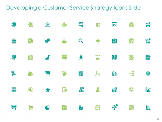 Developing_A_Customer_Service_Strategy_Ppt_PowerPoint_Presentation_Complete_Deck_With_Slides_Slide_43