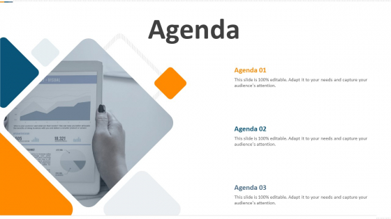 Developing Action Plan For Gaining Market Advantage Agenda Ppt PowerPoint Presentation Summary Rules PDF