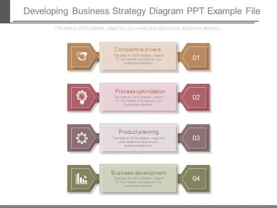 Developing Business Strategy Diagram Ppt Example File