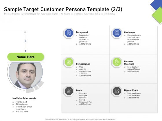 Developing Content Mapping Strategy Sample Target Customer Persona Template Demographics Ppt Gallery Outfit PDF