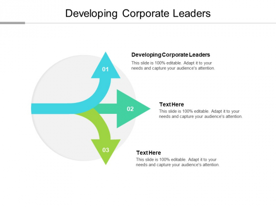 Developing Corporate Leaders Ppt PowerPoint Presentation Portfolio Ideas Cpb