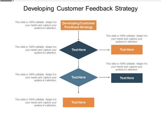 Developing Customer Feedback Strategy Ppt PowerPoint Presentation Layouts Display Cpb Pdf