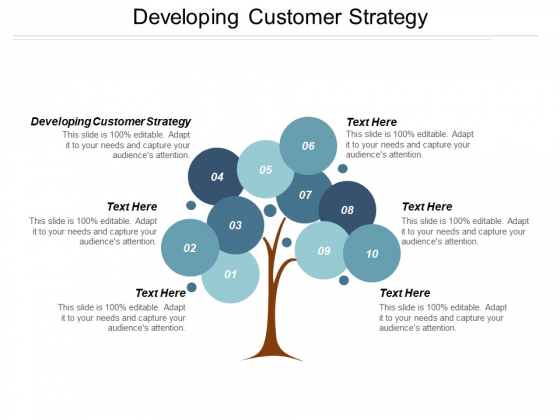 Developing Customer Strategy Ppt PowerPoint Presentation Model Visual Aids