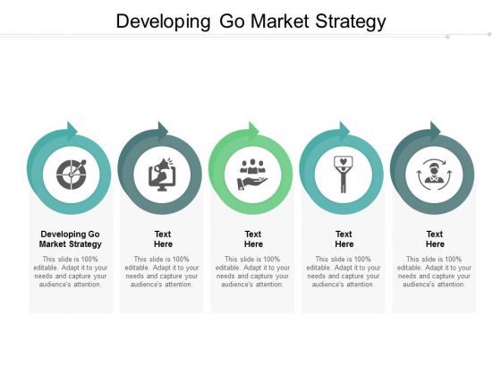 Developing Go Market Strategy Ppt PowerPoint Presentation Pictures Elements Cpb