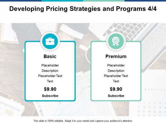 Developing Pricing Strategies And Programs Management Ppt PowerPoint Presentation Show Graphic Images