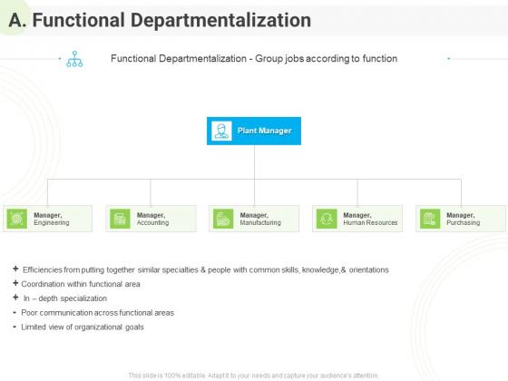 Developing Work Force Management Plan Model A Functional Departmentalization Diagrams PDF