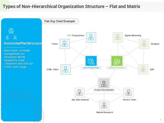 Developing Work Force Management Plan Model Types Of Non Hierarchical Organization Structure Flat Matrix Microsoft PDF