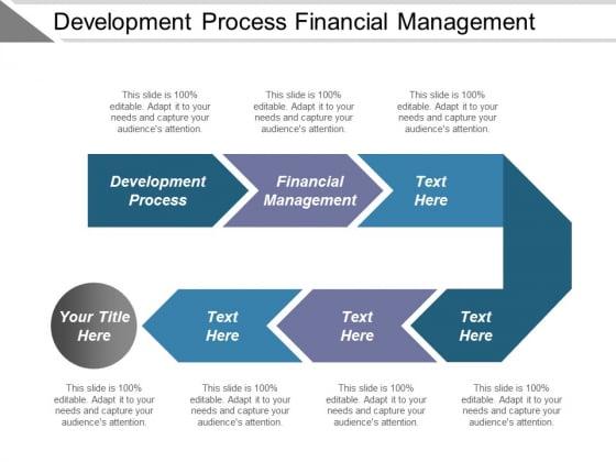 Development Process Financial Management Ppt PowerPoint Presentation Show Background Images