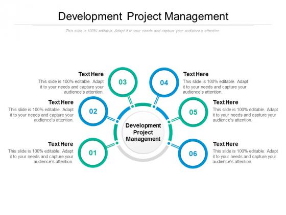 Development Project Management Ppt PowerPoint Presentation Inspiration Styles Cpb