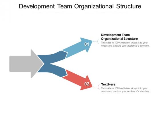Development Team Organizational Structure Ppt PowerPoint Presentation File Slide Portrait Cpb