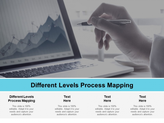 Different Levels Process Mapping Ppt PowerPoint Presentation Show Rules Cpb