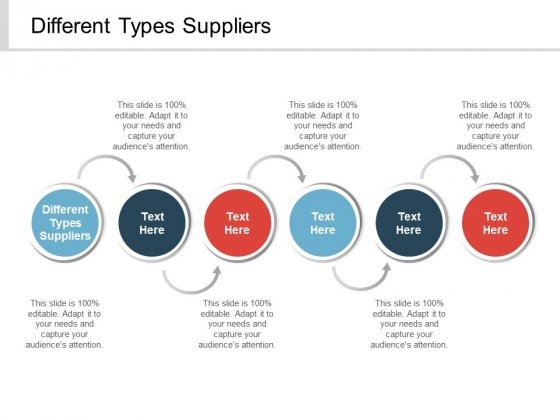 Different Types Suppliers Ppt PowerPoint Presentation Professional Deck Cpb