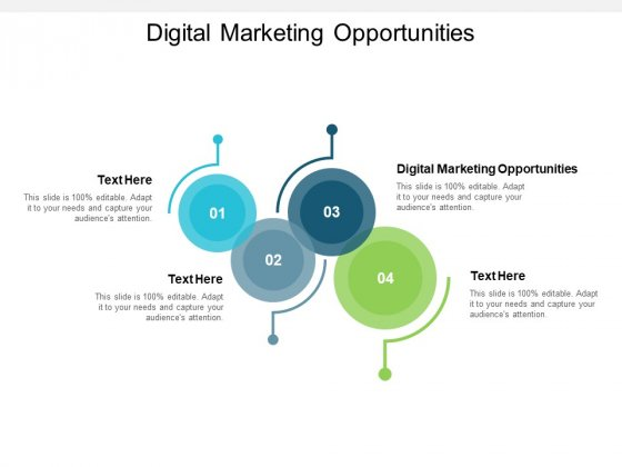 Digital Marketing Opportunities Ppt PowerPoint Presentation Portfolio Background Designs Cpb