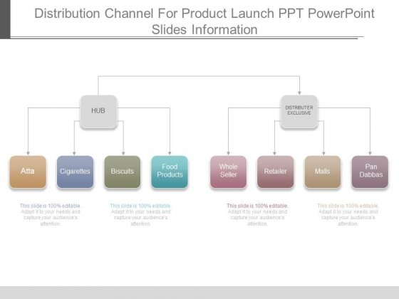 Distribution Channel For Product Launch Ppt Powerpoint Slides Information