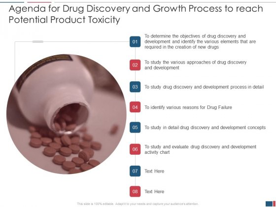 Drug_Discovery_And_Growth_Process_To_Reach_Potential_Product_Toxicity_Ppt_PowerPoint_Presentation_Complete_Deck_With_Slides_Slide_2