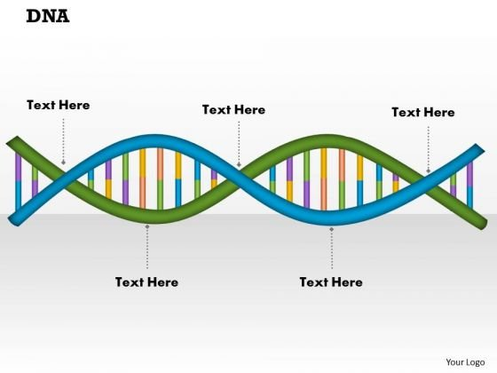 Dna PowerPoint Presentation Template
