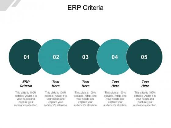 ERP Criteria Ppt PowerPoint Presentation Summary Tips Cpb