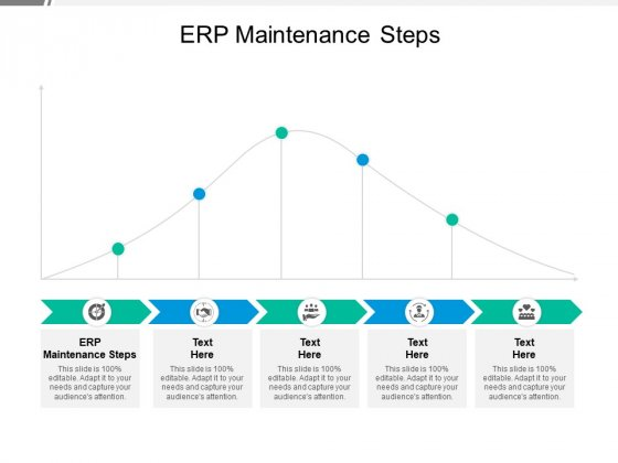 ERP Maintenance Steps Ppt PowerPoint Presentation Pictures Example Cpb