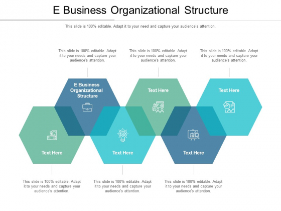 E Business Organizational Structure Ppt PowerPoint Presentation Summary Maker Cpb