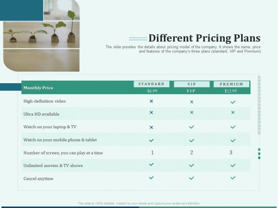 Early Stage Funding Different Pricing Plans Ppt Professional Design Templates PDF