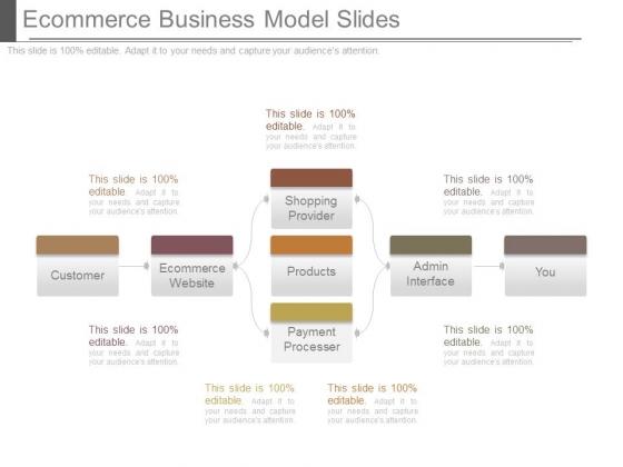 Ecommerce Business Model Slides