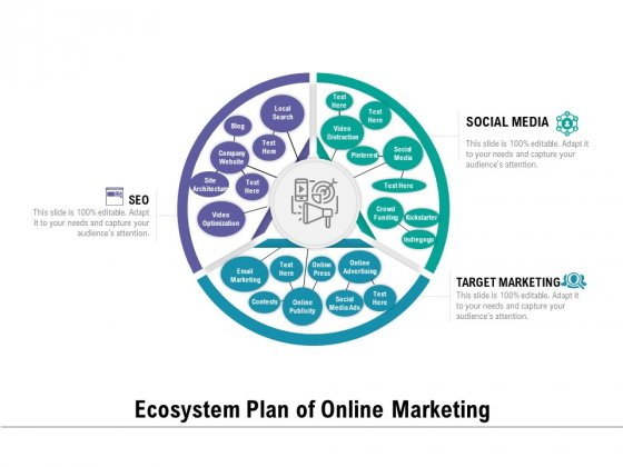Ecosystem Plan Of Online Marketing Ppt PowerPoint Presentation Professional Structure PDF