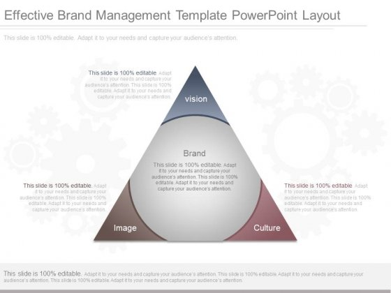 Effective Brand Management Template Powerpoint Layout