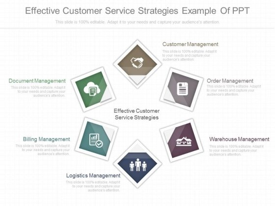 Effective Customer Service Strategies Example Of Ppt
